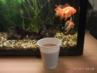 (c) CYM - MY COFFEE - 2011-09-08